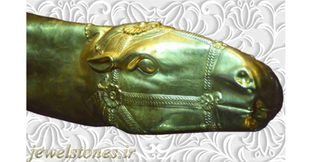 تکوک طلایی اسب